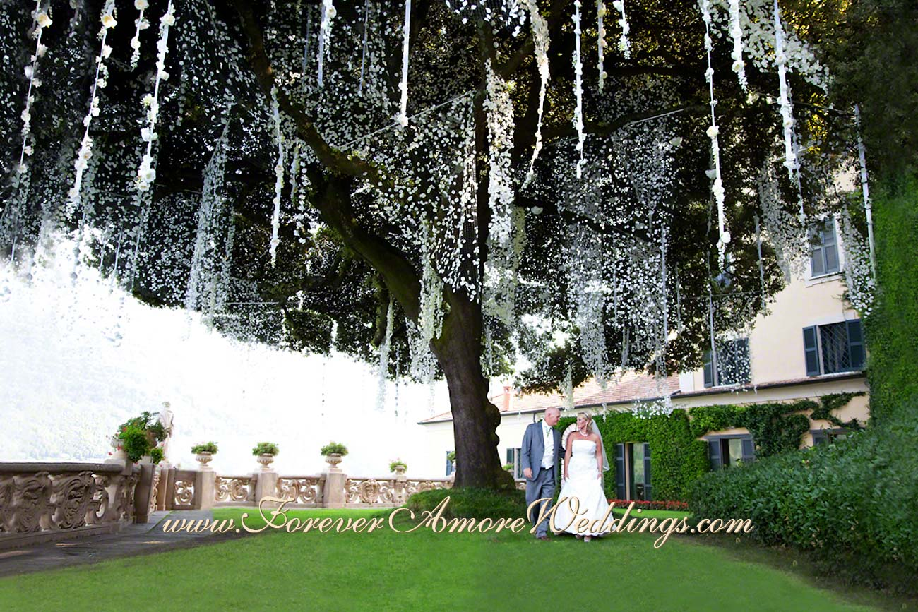 giant tree of villa Balbianello with hanging flower decoration
